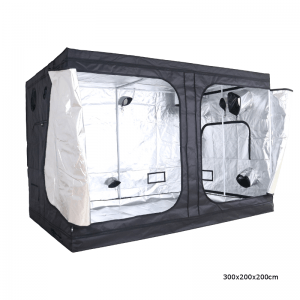 Gorilla Box