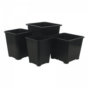 Pots, Trays & Stands